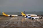 ハピネスさんが、中部国際空港で撮影したエアー・ホンコン A300F4-605Rの航空フォト(飛行機 写真・画像)