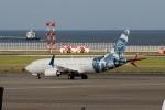 さんみさんが、中部国際空港で撮影したBBJ One 737-7CJ BBJの航空フォト(写真)