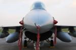 たろりんさんが、横田基地で撮影したアメリカ空軍 F-16DM-40-CF Fighting Falconの航空フォト(写真)