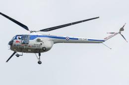 Tomo-Papaさんが、フェアフォード空軍基地で撮影したザ・フライングブルズ 171 Sycamore HR.52の航空フォト(飛行機 写真・画像)