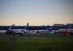 タミーさんが、成田国際空港で撮影した全日空 787-9の航空フォト(写真)