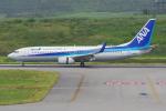 PASSENGERさんが、新石垣空港で撮影した全日空 737-881の航空フォト(写真)