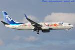 いおりさんが、福岡空港で撮影した全日空 737-881の航空フォト(写真)
