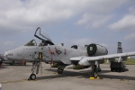 とらとらさんが、横田基地で撮影したアメリカ空軍 A-10C Thunderbolt IIの航空フォト(飛行機 写真・画像)