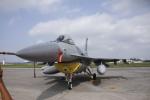 とらとらさんが、横田基地で撮影したアメリカ空軍 F-16CM-50-CF Fighting Falconの航空フォト(飛行機 写真・画像)