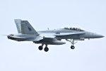 isiさんが、厚木飛行場で撮影したアメリカ海兵隊 F/A-18D Hornetの航空フォト(写真)