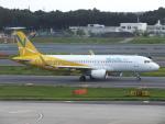 Y@RJGGさんが、成田国際空港で撮影したバニラエア A320-214の航空フォト(写真)