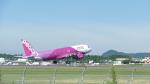Koj-skadb2116さんが、鹿児島空港で撮影したピーチ A320-214の航空フォト(写真)