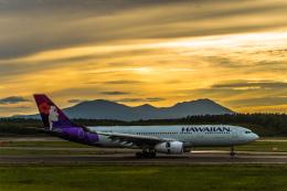 Cygnus00さんが、新千歳空港で撮影したハワイアン航空 A330-243の航空フォト(写真)