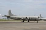 北枝 輝造さんが、八戸航空基地で撮影した海上自衛隊 P-3Cの航空フォト(写真)