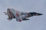eagletさんが、小松空港で撮影した航空自衛隊 F-15DJ Eagleの航空フォト(写真)