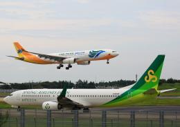 タミーさんが、成田国際空港で撮影したセブパシフィック航空 A330-343Eの航空フォト(写真)