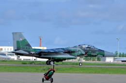 NALUさんが、小松空港で撮影した航空自衛隊 F-15DJ Eagleの航空フォト(飛行機 写真・画像)