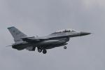 nobu_32さんが、横田基地で撮影したアメリカ空軍 F-16DM-40-CF Fighting Falconの航空フォト(写真)