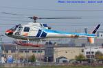 いおりさんが、八尾空港で撮影した中日本航空 AS350B Ecureuilの航空フォト(写真)