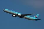 杉の裏さんが、羽田空港で撮影した大韓航空 777-3B5の航空フォト(飛行機 写真・画像)