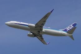 akinarin1989さんが、福岡空港で撮影した全日空 737-881の航空フォト(飛行機 写真・画像)