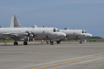 Cスマイルさんが、八戸航空基地で撮影した海上自衛隊 P-3Cの航空フォト(写真)