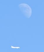 Dreamliner_NRT51さんが、成田国際空港で撮影した日本航空の航空フォト(写真)