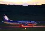 タミーさんが、福島空港で撮影したANAウイングス 737-54Kの航空フォト(写真)