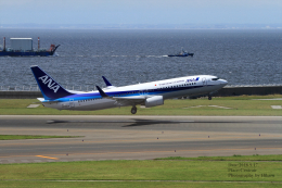 hikaruphotographさんが、中部国際空港で撮影した全日空 737-881の航空フォト(飛行機 写真・画像)