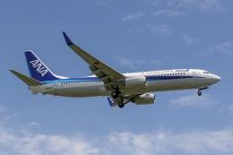 mototripさんが、福岡空港で撮影した全日空 737-881の航空フォト(飛行機 写真・画像)