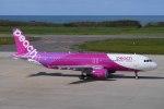mibumibuさんが、新潟空港で撮影したピーチ A320-214の航空フォト(写真)