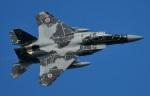 mikechinさんが、小松空港で撮影した航空自衛隊 F-15DJ Eagleの航空フォト(写真)