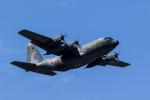 ファントム無礼さんが、横田基地で撮影した航空自衛隊 C-130H Herculesの航空フォト(写真)