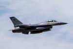 ファントム無礼さんが、横田基地で撮影したアメリカ空軍 F-16 Fighting Falconの航空フォト(写真)