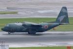 mototripさんが、福岡空港で撮影した航空自衛隊 C-130H Herculesの航空フォト(写真)
