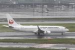 とらとらさんが、羽田空港で撮影した日本航空 737-846の航空フォト(写真)