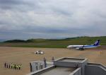 タミーさんが、福島空港で撮影した全日空 737-881の航空フォト(写真)