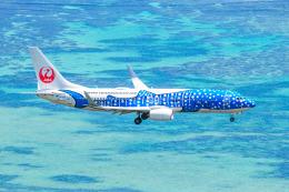 kuraykiさんが、新石垣空港で撮影した日本トランスオーシャン航空 737-8Q3の航空フォト(写真)