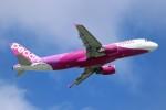 ばっきーさんが、那覇空港で撮影したピーチ A320-214の航空フォト(写真)