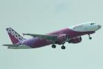 cassiopeiaさんが、那覇空港で撮影したピーチ A320-214の航空フォト(写真)