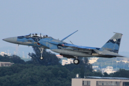 cassiopeiaさんが、那覇空港で撮影した航空自衛隊 F-15DJ Eagleの航空フォト(飛行機 写真・画像)