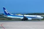 cassiopeiaさんが、那覇空港で撮影した全日空 737-8ALの航空フォト(写真)