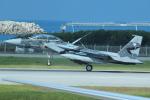 cassiopeiaさんが、那覇空港で撮影した航空自衛隊 F-15DJ Eagleの航空フォト(写真)