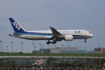 まーちらぴっどさんが、羽田空港で撮影した全日空 787-8 Dreamlinerの航空フォト(写真)