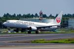 Cozy Gotoさんが、成田国際空港で撮影した日本航空 737-846の航空フォト(写真)