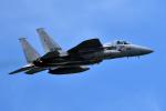 harahara555さんが、横田基地で撮影した航空自衛隊 F-15J Eagleの航空フォト(写真)