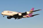 panchiさんが、成田国際空港で撮影したタイ国際航空 A380-841の航空フォト(写真)