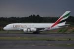 知希(仮)さんが、成田国際空港で撮影したエミレーツ航空 A380-861の航空フォト(写真)