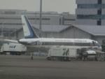 ヒロリンさんが、羽田空港で撮影したタイ王国空軍 A319-115CJの航空フォト(写真)