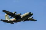 NCT310さんが、横田基地で撮影した航空自衛隊 C-130H Herculesの航空フォト(写真)