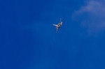 NCT310さんが、横田基地で撮影したアメリカ空軍 F-16DM-50-CF Fighting Falconの航空フォト(写真)