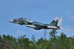 フォト太郎さんが、小松空港で撮影した航空自衛隊 F-15DJ Eagleの航空フォト(写真)