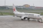 やさい弁当さんが、松山空港で撮影した日本航空 737-846の航空フォト(写真)