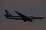 imosaさんが、羽田空港で撮影した全日空 767-381/ERの航空フォト(写真)